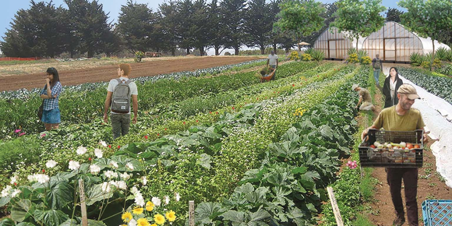 A rendering of the IU Campus Farm:  People working among the long rows of vegetables and flowers. Two greenhouses are in the background.